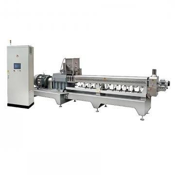Double Screw Stainless Steel Extruder Machine Processing Production Line Core Filling Inflating Rice Corn Cereal Puffs Snack Food Corn Snack Making Machine
