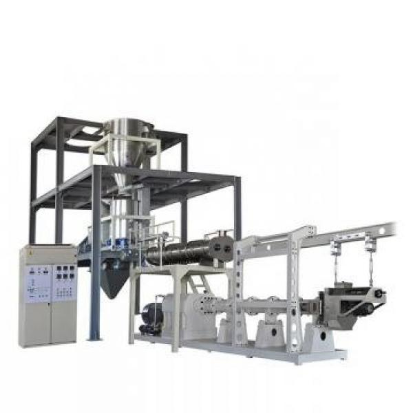 Ce Standard Full Automatic Corn Curls Nik Naks Manufacturing Machine