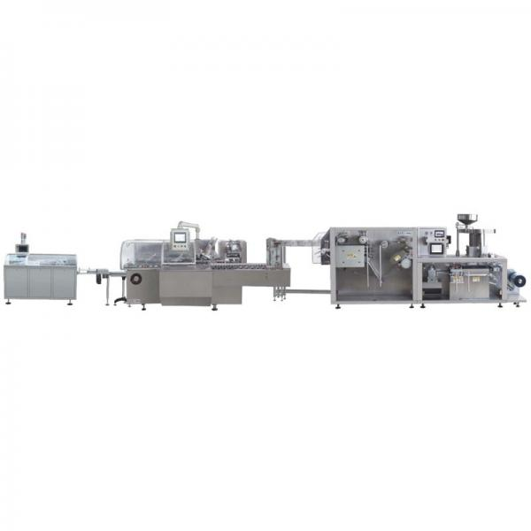 Fully Automatic Industrial Artificial Rice Processing Line