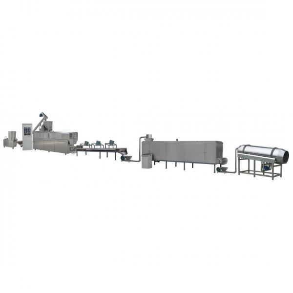 Artificial Nutritive Puffed Rice Puffing Processing Machine Lines