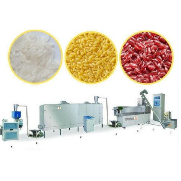 Easy Operation Artificial Rice Production Line Nutritional Rice Processing Line Instant Rice Processing Line
