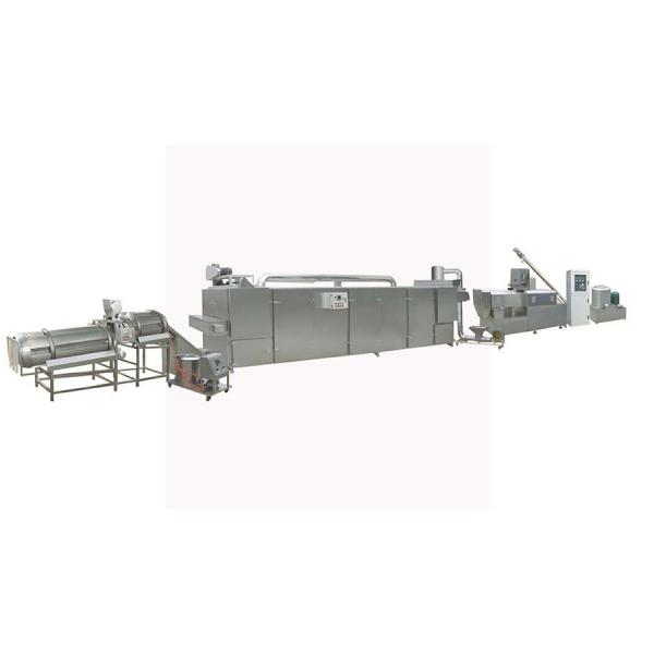 China Factory Supplier Double Screw Pet Dog Chicken Food Extrusion Making Machine