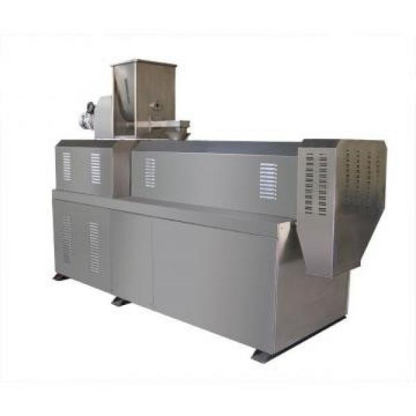Commerical and Durable Corn Puffs Snacks Making Machine for Sale Made in China