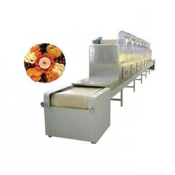 Battery Materials Tunnel Microwave Dryer Drying Machine