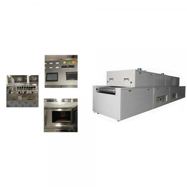 Customized Microwave Root Vegetable Drying Machine
