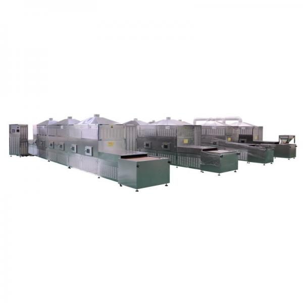 High Quality Microwave Drying Sterilizing Equipment Bentonite Clay Cat Litter Process Machine Line