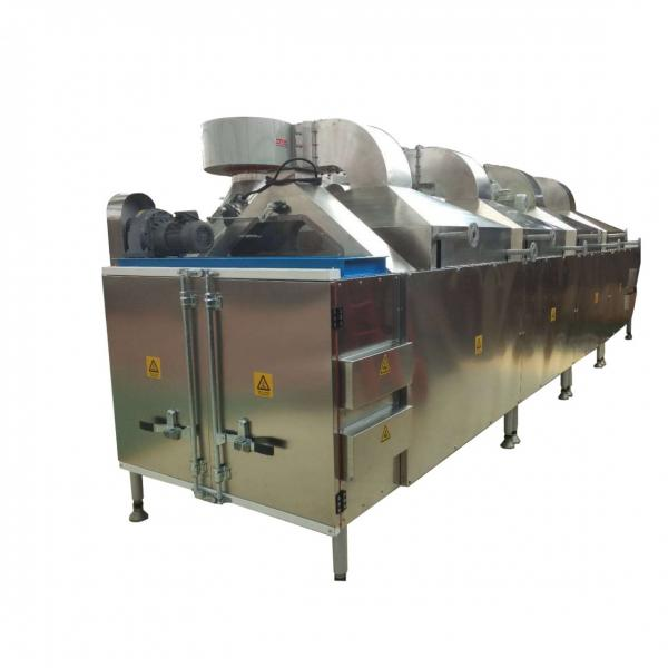 Best Selling Puffed Corn Snacks Food Production Line Extruder Machine
