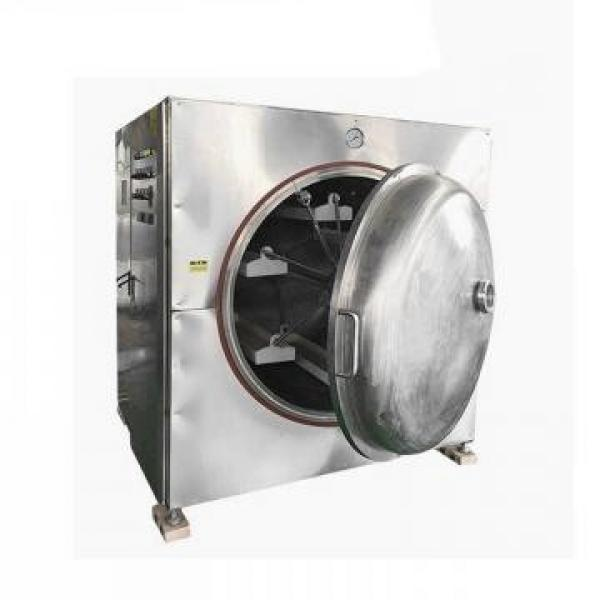 High Quality and Industrial Automatic Microwave Drying Spicy Leaves Machine for Sale