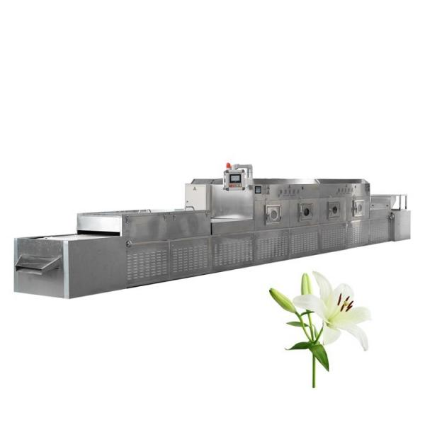 Industrial Microwave Tunnel Type Honeycomb Ceramic Drying Machine