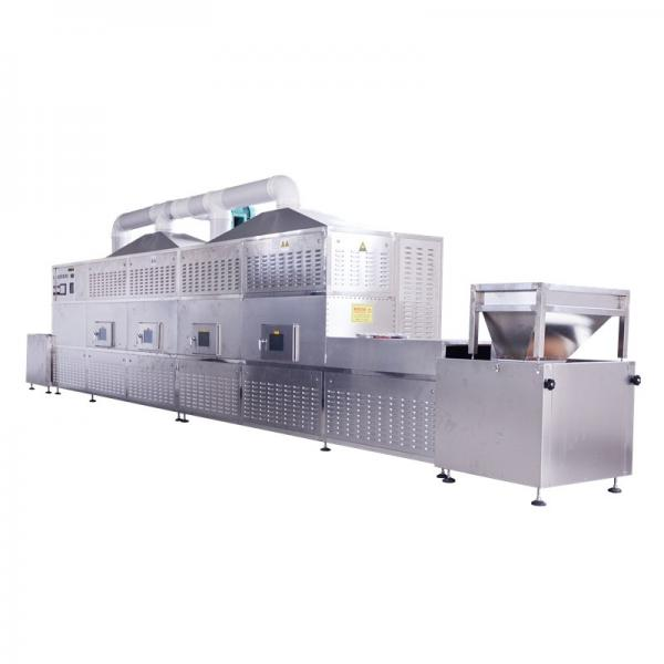 Industrial Microwave Oven Dryer Continuous Belt Food Microwave Drying Machine