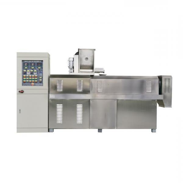 Twin Screw Extruder Puffed Corn Chips Puff Snack Food Extrusion Machine