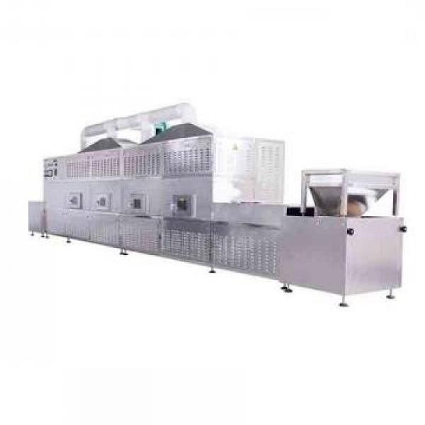 Small Industrial Microwave Oven/Ovens Avocado Vacuum Dryers