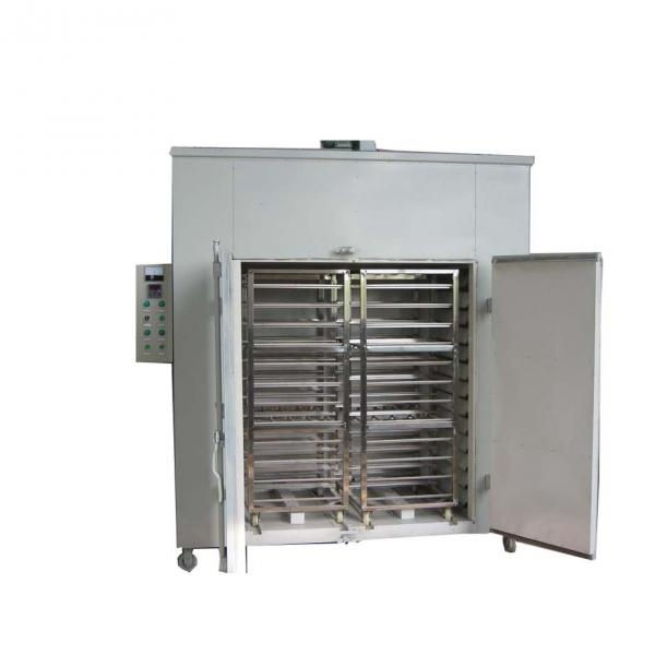 Drying Machine Chili Dryer Peper Drying Machinery Full Automatic Microwave Vacuum Baking Food Oven Machine