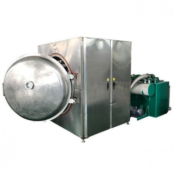4 6 8 12 Layer Automatic Intelligent Electrical Tray Microwave Vacuum Dryer