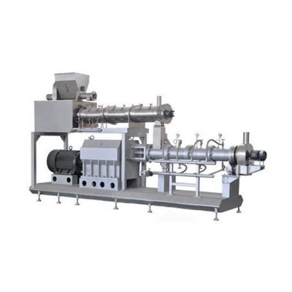 Dayi Twin-Screw Extruder for Fried Snack Pellet Food Chips